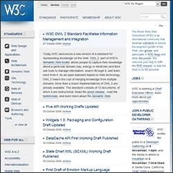 W3C website