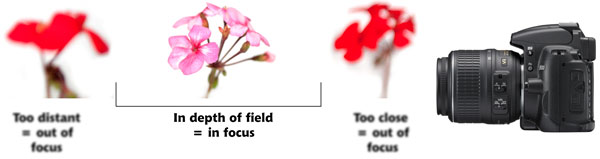 The size of the depth of field