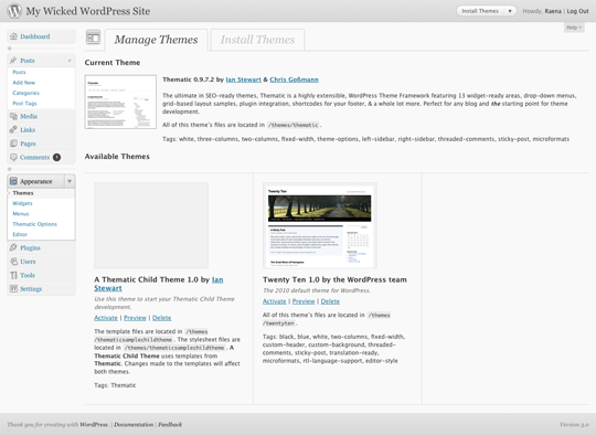 The Manage Themes panel in WordPress 3, showing Twenty Ten and Thematic