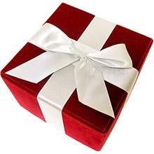 Christmas geek gifts