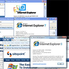 IE6, IE7 and IE8 on Windows 7