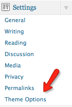 The Theme Options link in the WordPress dashboard
