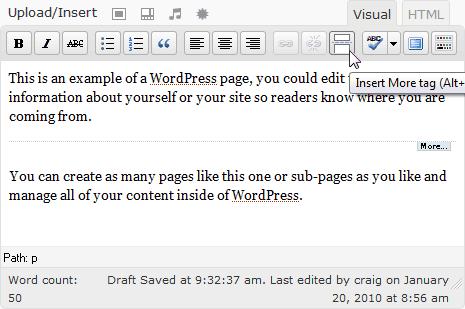 WordPress editing pane showing 'more' button
